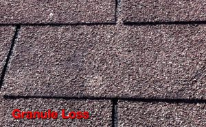 WHAT ARE THOSE GRANULES COMING OFF YOUR ROOF?   PREMO ...