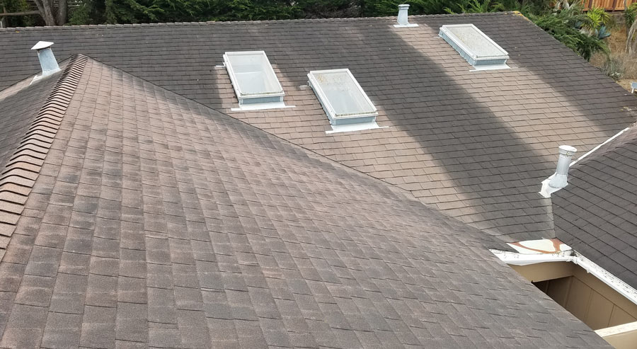 Composition roof before cleaning